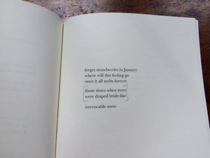 Excerpt from a poem by Holly Wren Spaulding, from the collection 'Pilgrim,' (Alice Greene & Co., 2014).