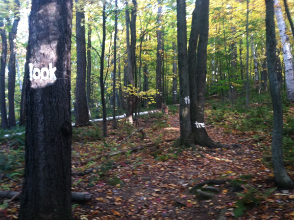 Here Stands—Poem—Appalachian Trail